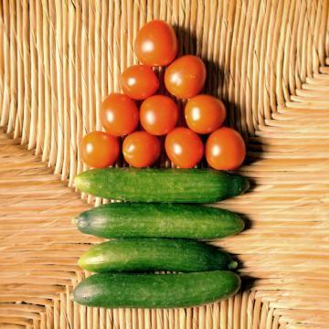 Das eigene Gemüse Teil 1