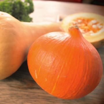 Das eigene Gemüse Teil 2: Kürbisse