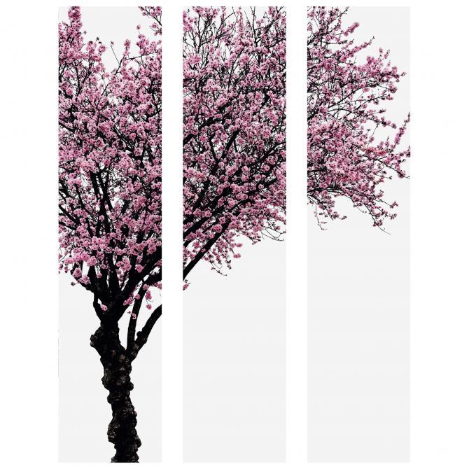 Wandbild Dekorahmen 3 teilig Kirschbaum farbig